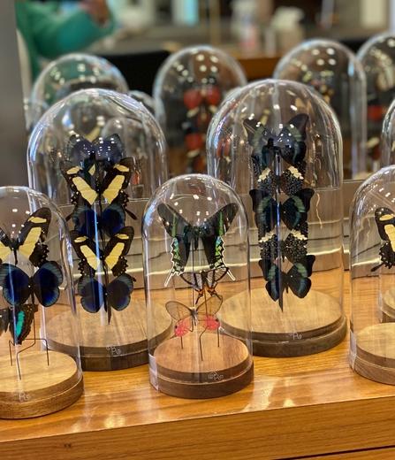Mes Globes